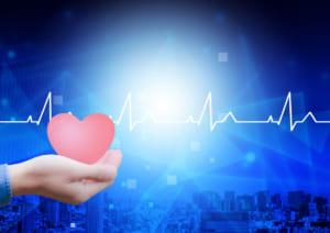 心電図_心臓模型