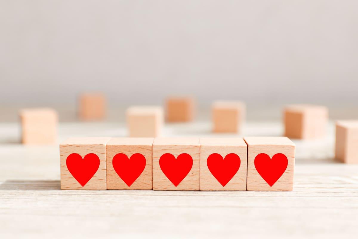 心臓の模型、ブロック