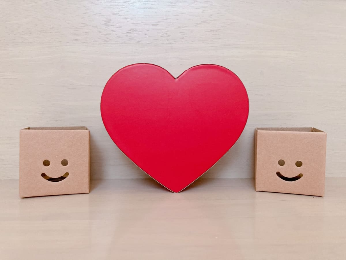 心臓模型、左ブロック、右ブロック