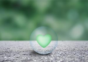 心臓模型_緑